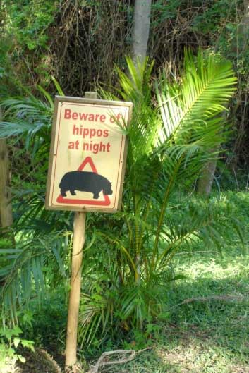 Sign-Beware-of-Hippos.jpg (56339 bytes)